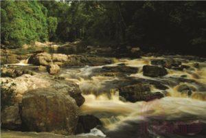 Lata Berkoh National Park